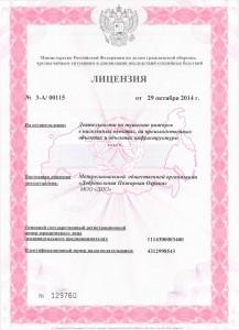 Лицензия МЧС, тушение